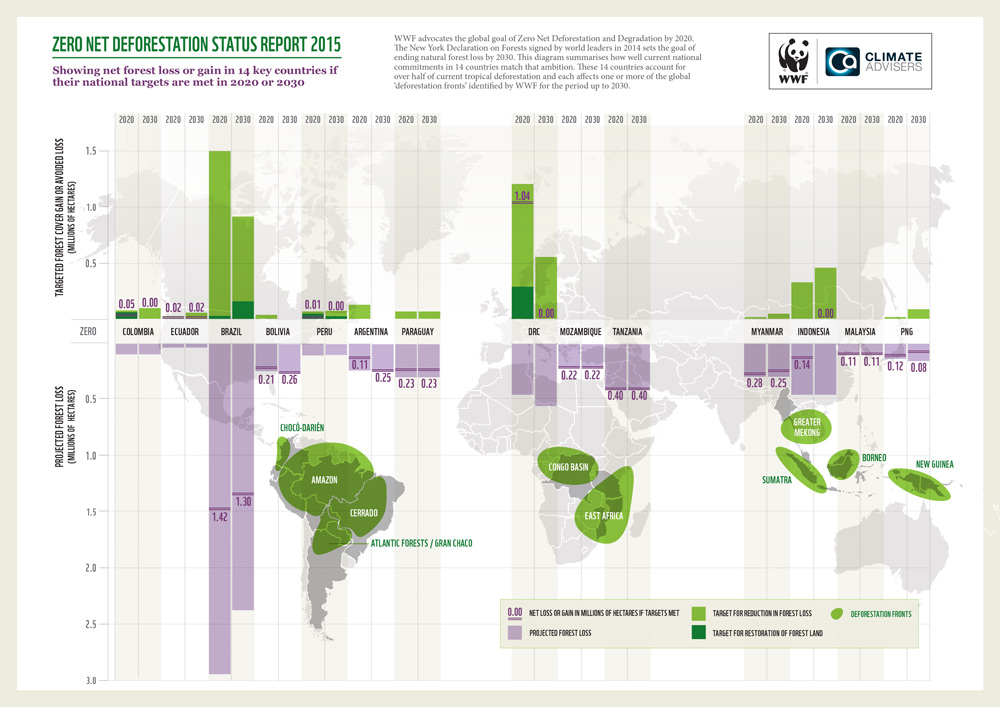 a summary of experiment on deforestation in rhondonia brazil In summary, the deforestation occurring in the amazon is a disaster because of the biological exterminations and the atmospheric modifications that can per manently affect life throughout the world.