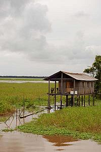 Houses on islands in the middle of the Amazon River