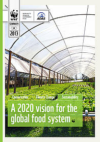 Front cover for the report 'A 2020 vision for the global food system'
