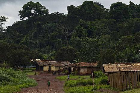 People and houses in a village by the forest, East province, Cameroon