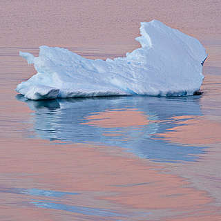 Ice floating in Antarctic waters