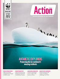 Front cover for the October 2012 issue of Action magazine