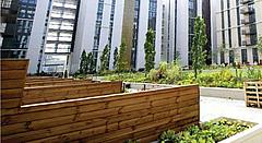 100% sustainably sourced timber was used at the Lend Lease's 2012 Athlete's Village