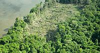 Aerial view of clear-cut rainforest, Amazonia, Brazil