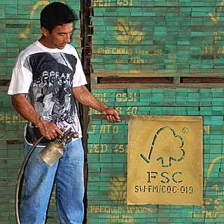 The symbol of the FSC is spay-painted onto stacks of processed timber.