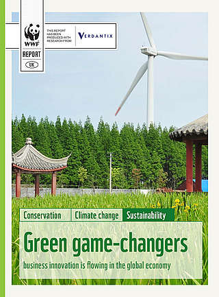 Green game changers 2013 doc cover