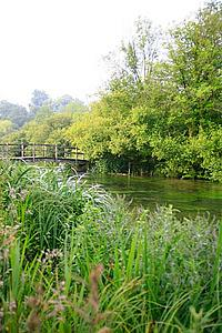 The chalkstream river Itchen at Ovington in Hampshire, southern England.
