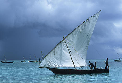 Dhow sailing boat. Lateen-rigged coastal sailing vessel of Arab origin. Zanzibar Island. Tanzania