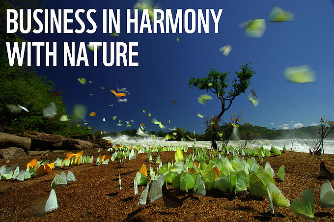 Business in harmony with nature