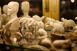 Carved ivory in a shop in Windhoek, Namibia.