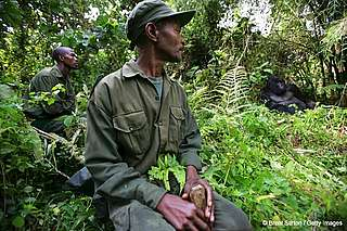 Conservation rangers, Virunga National Park, Congo