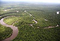 Aerial view of the Amazon River