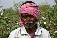 Cotton farmer