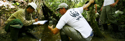 Research carried out in the Amazon rainforest, Peru