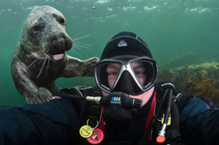 Alex Mustard underwater selife with a seal