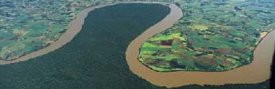 Amazon river showing forest on one bank and cultivated land on the other