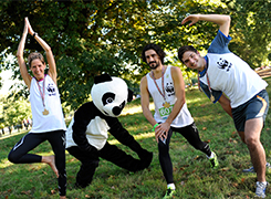 Team Panda preparing for a race