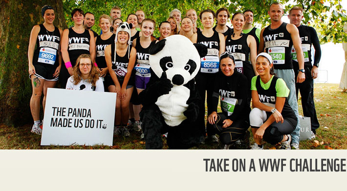 Get involved with WWF events