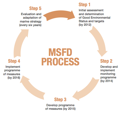 Process and timemline for implementation of the MSFD