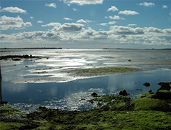 Tidal flats in scotland