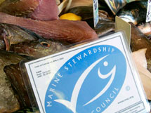 Buy sustainable MSC fish