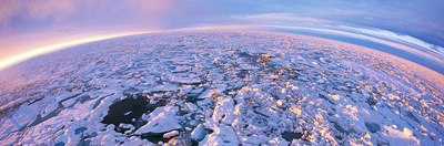 Fish eye view of Arctic sea ice