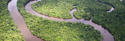 Aerial view over the Amazon river