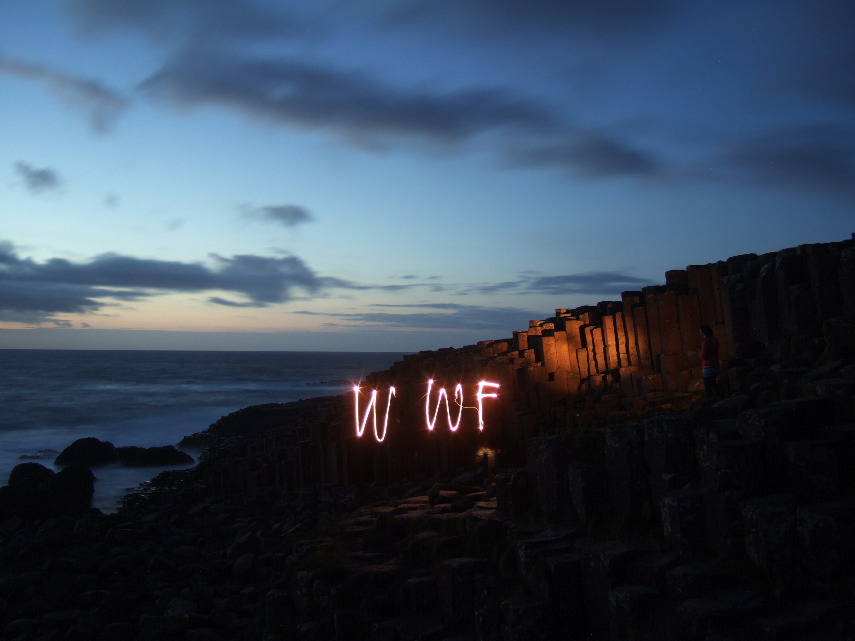 Earth Hour at Giant's Causeway - Image - Wild Life - WWF