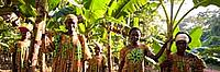 Women, members of a WWF supported project, on a plantation in Mambele, East province, Cameroon