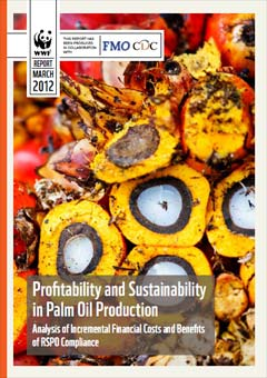 Profitability and Sustainability in Palm Oil Production