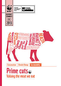 Document cover for 'Prime cuts: valuing the meat we eat' summary