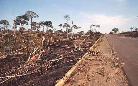Deforestation along road between Rio Branco and Xapuri, Acre, Brazil