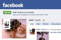 WWF Turtle on Facebook
