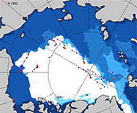 Shrinking Arctic sea ice animation