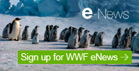Sign up for WWF eNews