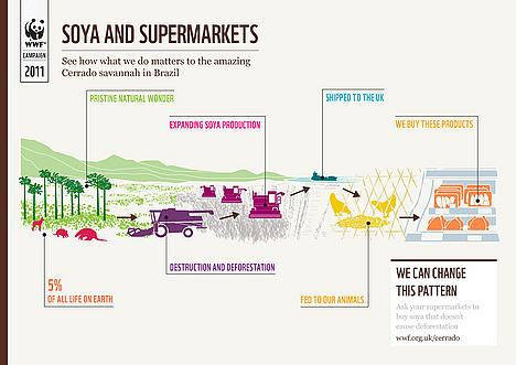 Soya and Supermarkets - What's the connection?