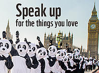 Speak up for the things you love - 17 June 2015