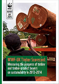 Timber Score Card report