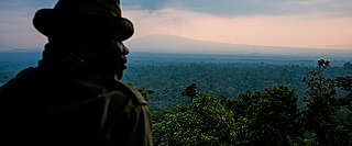 Ranger overlooks Virunga