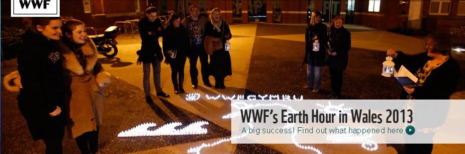 Post Earth Hour homepage banner Wales