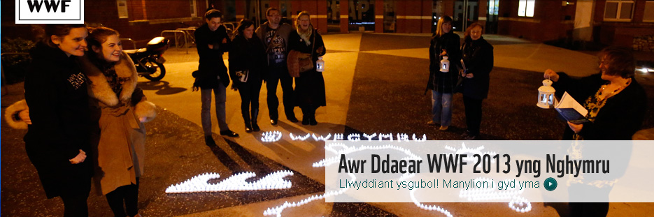 Homepage banner post Earth Hour 2013 - Welsh