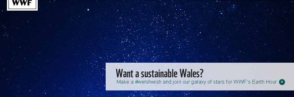 Welsh Wish Earth Hour banner