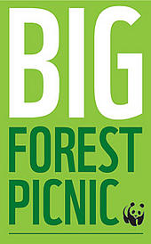 Big Forest Picnic