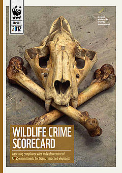 Front cover of the Wildlife Crime Scorecard report
